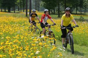 Mountain Bikes in valnerina